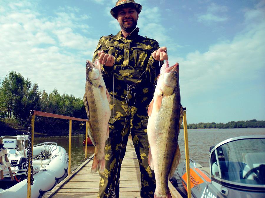 Летняя рыбалка на Волге